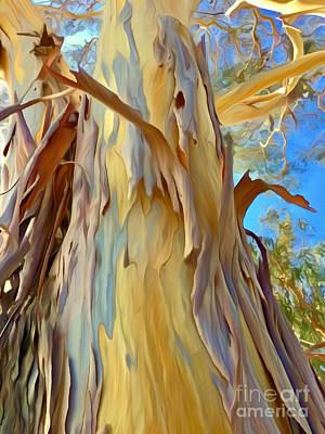 Whimsically Poetic Photographs - Eucalyptus Tree Sky by Christina Ford