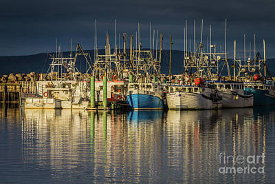 Photograph - Evening At Digby Harbor by Eva Lechner