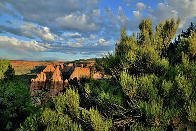 Kim Fearheiley Photography Royalty Free Images - Evening Clouds above Colorado National Monument Royalty-Free Image by Ray Mathis