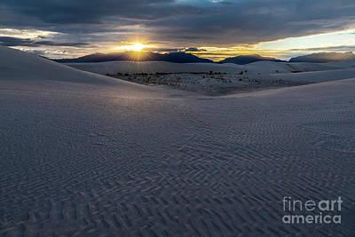 Photograph - Evening Glory by Sandra Bronstein