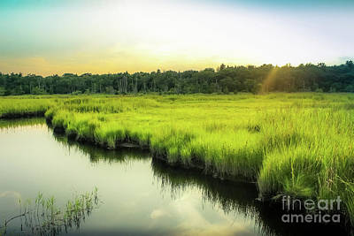 Photograph - Evening Glow by Colleen Kammerer
