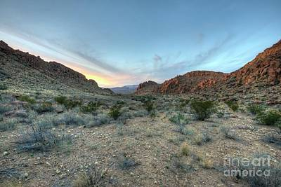 Photograph - Evening In The Desert by Joe Sparks