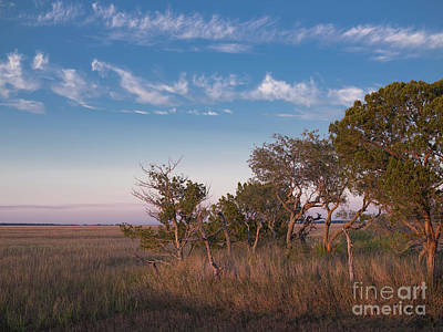 Photograph - Evening In The Salt Marsh 2 by Patrick M Lynch