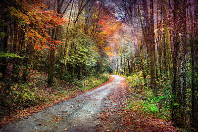 Photograph - Evening On The Autumn Trail by Debra and Dave Vanderlaan