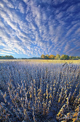 Art Print featuring the photograph Every Moment Spent by Phil Koch