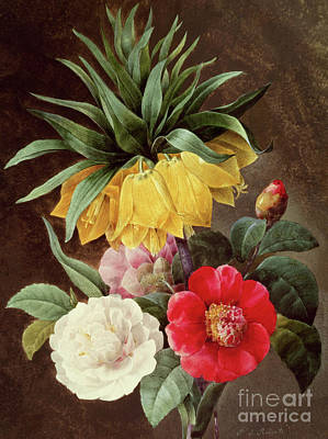 Painting - Exotic Flowers by Pierre Joseph Redoute