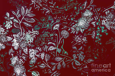 Floral Abstract Photograph - Exotic Harmony by Jorgo Photography - Wall Art Gallery