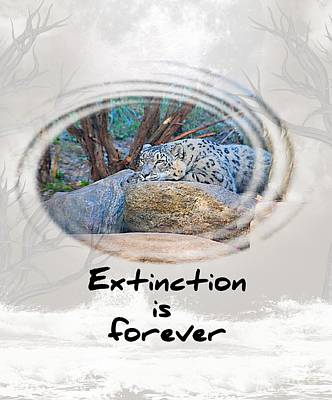 Photograph - Extinction Is Forever by Elaine Manley