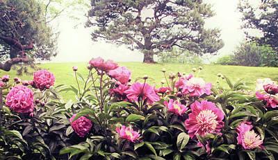 Photograph - Hillside Blossoms by Jessica Jenney