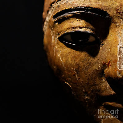 Photograph - Face Of Egypt by Sue Harper