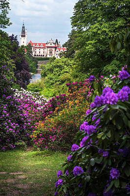 Photograph - Fairy Castle Through Blooming Rhododendrons by Jenny Rainbow