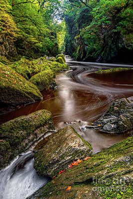 Photograph - Fairy Glen Gorge by Adrian Evans