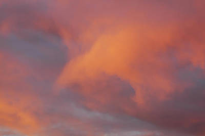 Photograph - Falcon Cloud by Kathleen Gauthier