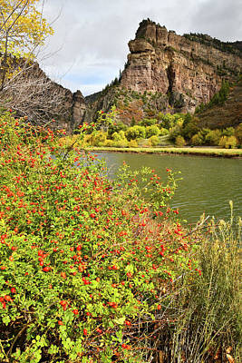 Photograph - Fall Along Colorado River In Glenwood Canyon by Ray Mathis