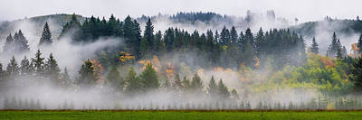 Photograph - Fall And Fog In Washington State by Michael Ash