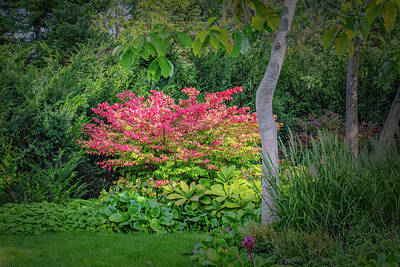 Photograph - Fall And Summer #h9 by Leif Sohlman