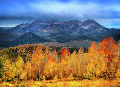 Royalty-Free and Rights-Managed Images - Fall Aspen Storm by Johnny Adolphson