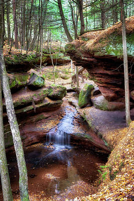Photograph - Fall At Echo Dells by Susan Rissi Tregoning