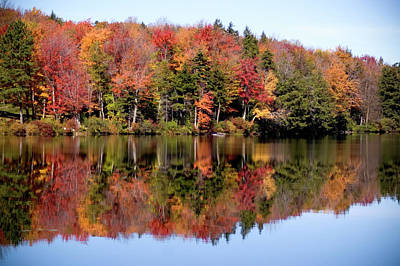 Photograph - Fall At Savoy Lake by Jeffrey PERKINS