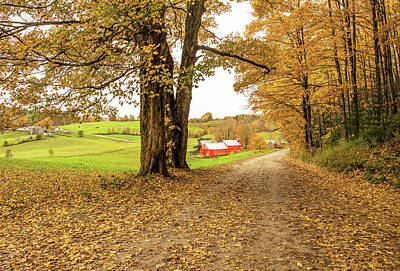 Photograph - Fall At The Jenne Farm by Gordon Ripley