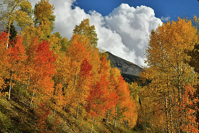 Photograph - Fall Color And Clouds Above Woods Lake State Wildlife Area by Ray Mathis