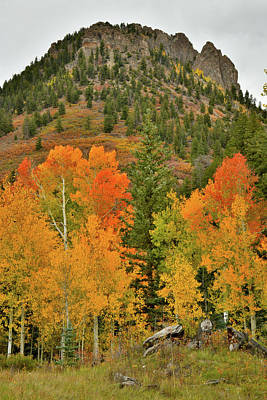 Photograph - Fall Color Castle Along Last Dollar Road by Ray Mathis