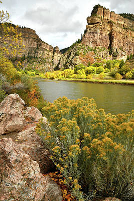 Photograph - Fall Color In The Spotlight Along Colorado River In Glenwood Canyon by Ray Mathis