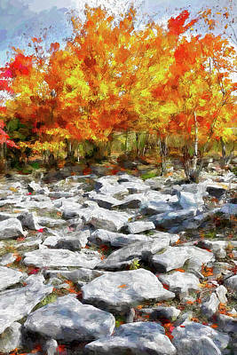Painting - Fall Color Trees And Rocks West Virginia Ap by Dan Carmichael