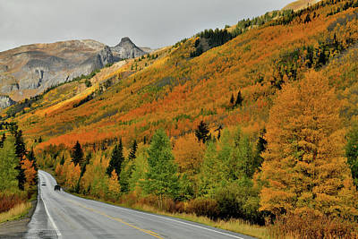 Photograph - Fall Colored Highway 550 In Colorado by Ray Mathis
