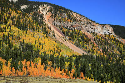 Photograph - Fall Colored Hillside Near Silverton by Ray Mathis