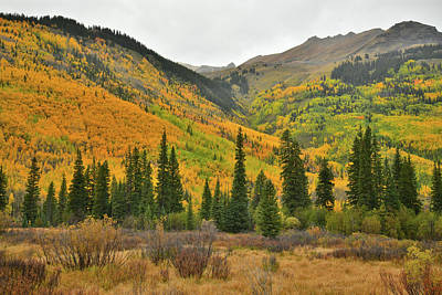 Photograph - Fall Colored Mountains Along Colorado Highway 550 by Ray Mathis