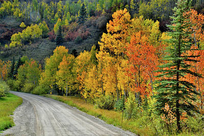 Photograph - Fall Colors Adorn Wilson Mesa Ranch Road by Ray Mathis