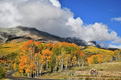 Photograph - Fall Colors Along Airport Road Above Telluride by Ray Mathis