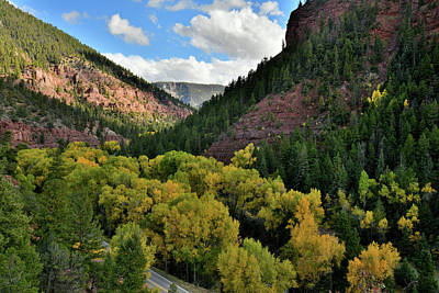 Photograph - Fall Colors Along Highway 145 Near Sawpit Co by Ray Mathis