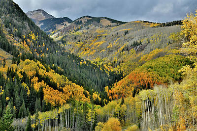 Photograph - Fall Colors Along Hwy 145 South Of Telluride by Ray Mathis