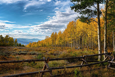 Photograph - Fall Colors In Utah by Michael Ash