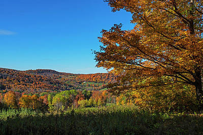 Photograph - Fall Colors In Woodstock Vt Vermont by Toby McGuire