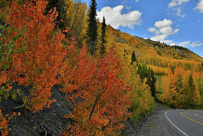 Photograph - Fall Colors Line Million Dollar Highway by Ray Mathis