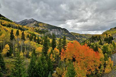 Photograph - Fall Colors Near Ilium Colorado by Ray Mathis