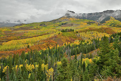 Photograph - Fall Colors Near Peak At Owl Creek Pass by Ray Mathis