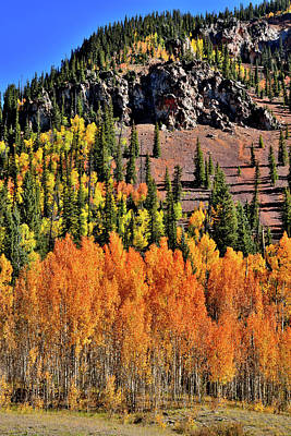 Photograph - Fall Colors Near Silverton by Ray Mathis