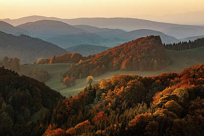 Photograph - Fall Colors by Nedjat Nuhi