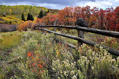 Photograph - Fall Colors On Last Dollar Road Ranch by Ray Mathis