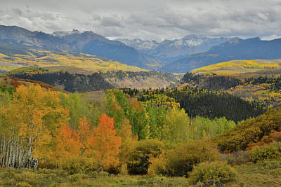Photograph - Fall Colors Peaking Along Last Dollar Road by Ray Mathis