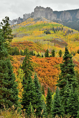 Photograph - Fall Colors Peaking Along Owl Creek Pass Road by Ray Mathis