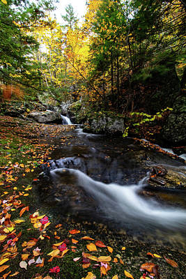 Photograph - Fall Colors Sandwich New Hampshire by Jeff Folger