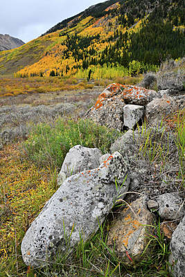 Photograph - Fall Comes To Castle Creek Road by Ray Mathis