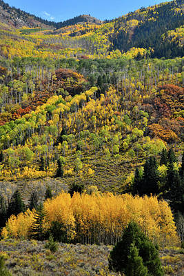 Photograph - Fall Comes To Mountains Along Highway 133 by Ray Mathis