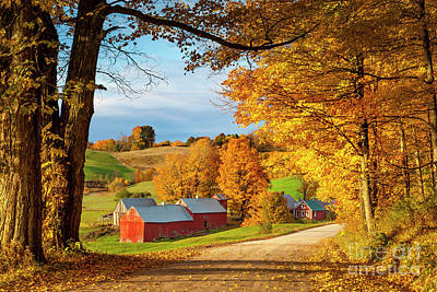Photograph - Fall Dawn In Vermont by Brian Jannsen