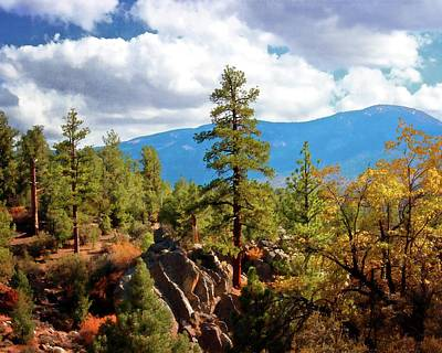 Photograph - Fall Day In Van Dusen Canyon by Timothy Bulone